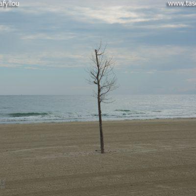 Κορινός. Παραλία Κατερίνης
